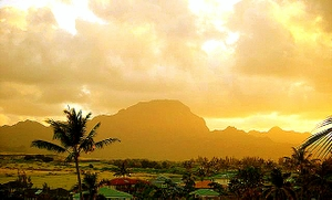 View from Bird of Paradise's living room : Hapu mountain range, Kauai vacation rental by owner