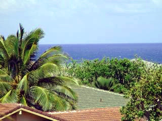 The Pacific Ocean view : Poipu vacation rental home