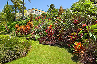 Front yard of Poipu vacation rental